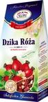 dzika_roza